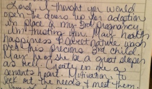 Aug. 2013 journal entry